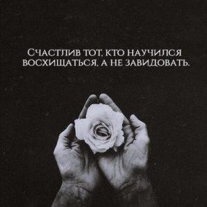 Картинка 13